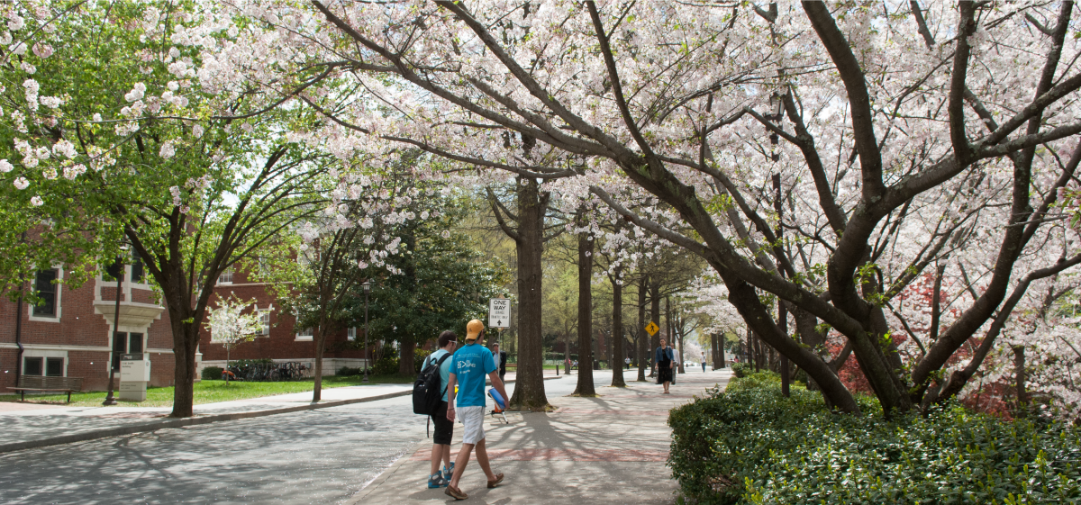 Students walking around Georgia Tech Campus